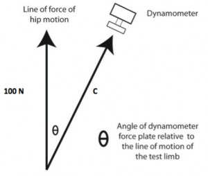 Figure 2. The effects of changes in the angle of the dynamometer force plate relative to the line of motion of the test limb on force recorded during strength testing. Here the dynamometer is no longer in line with the line of force of the hip motion, (i.e. the angle has increased from 0o). If Ѳ is equal to 30o, and a subject produces 100 Newtons (N), then 116.3 Newtons will be transmitted to the dynamometer (C = 100 Newtons/cosine 30o).
