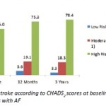 Adequacy of anticoagulation according to CHADS2 criteria in patients with atrial fibrillation in general practice - a retrospective cohort study